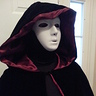 Photo #3 - The Phantom Specter