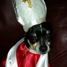 Photo #2 - The Pope