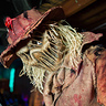 Photo #1 - The Scarecrow
