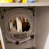Photo #4 - Empty dryer back view