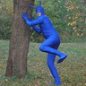 Photo #4 - The Tick