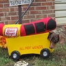 Photo #2 - The Wienermobile