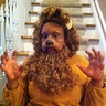 Photo #1 - Cowardly Lion