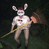 Photo #3 - The Zombie Rabbit