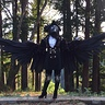 Photo #1 - Full body with wings