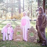 Photo #1 - Family three little pigs