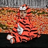 Photo #1 - Adorable Tiger on his 1st Halloween