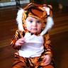 Photo #4 - angry tiger
