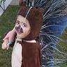 Photo #4 - Toddler Porcupine