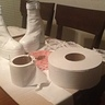Photo #3 - Some of the supplies, a new and used roll of toilet paper showing how much paper was used for the costume