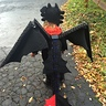 Photo #1 - Back of toothless