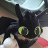 Photo #2 - Toothless Dragon
