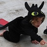Photo #3 - Toothless Dragon