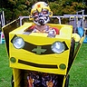 Photo #1 - Bumble Bee Transformer