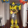 Photo #1 - Me as bumble bee
