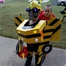 Photo #1 - Transforming Bumblebee