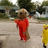 Photo #2 - Trick 'r Treat Sam