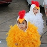 Photo #2 - Twin Baby Chicks