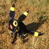 Photo #6 - Umbreon