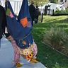 Photo #4 - Upside Down Scarecrow