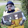 Photo #1 - Wall-E