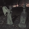 Photo #1 - Weeping Angel