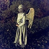 Photo #5 - Weeping Angel-5