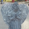 Photo #1 - Weeping Angel