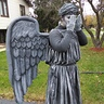Photo #2 - Weeping Angel