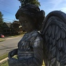 Photo #5 - Weeping Angel