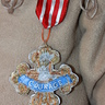 Photo #6 - Courage Medal for the Lion