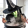 Photo #3 - Wicked Witch