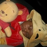 Photo #3 - Winnie the Pooh