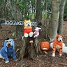 Photo #1 - Winnie the Pooh and Friends