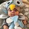 Photo #2 - Wise Baby Owl