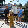 Photo #2 - The Cowardly Lion wants his Mommy!