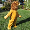 Photo #6 - The Lion