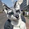 Photo #2 - Wolf