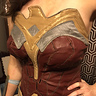 Photo #5 - WonderWoman closeup