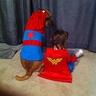 Photo #2 - Super heros
