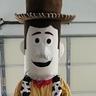 Photo #2 - Woody