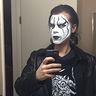 Photo #3 - Wrestler Sting