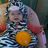 Photo #1 - I'ma baby zebra with my pumpkin