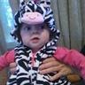 Photo #3 - Baby zebra