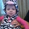 Photo #4 - Baby zebra