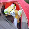 Photo #4 - ZipZap Camping