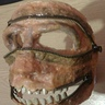 Photo #6 - Mask removed and teeth added