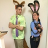 Photo #2 - Zootopia Nick and Judy Hopps