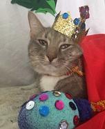 A King Furr Me Homemade Costume