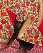 A Piece of the Pie Homemade Costume